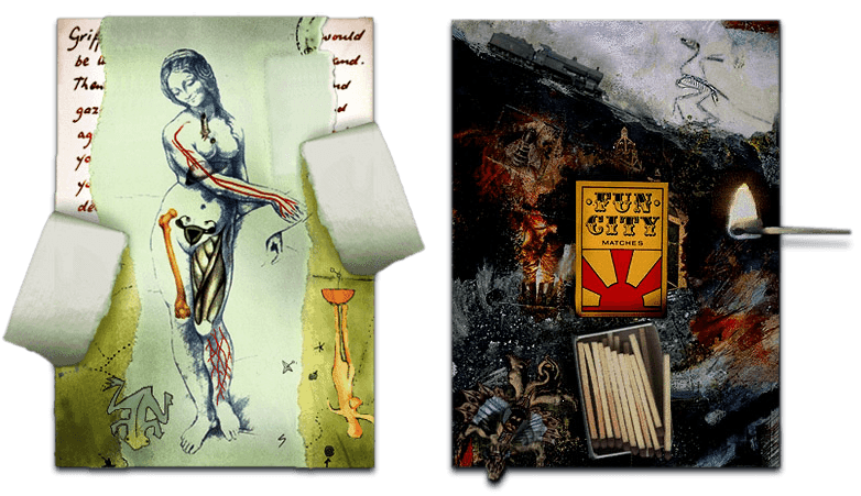 BOTH CARDS ALPHA